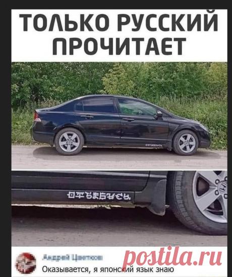 Юмор, смешные картинки, мемы. Веселое настроение на весь день   Блог смешного   Яндекс Дзен
