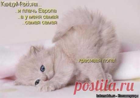 Самая красивая...)))