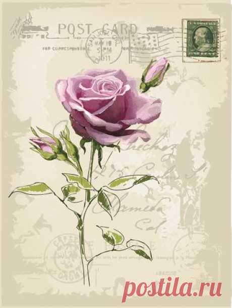 Винтажные картинки с цветами