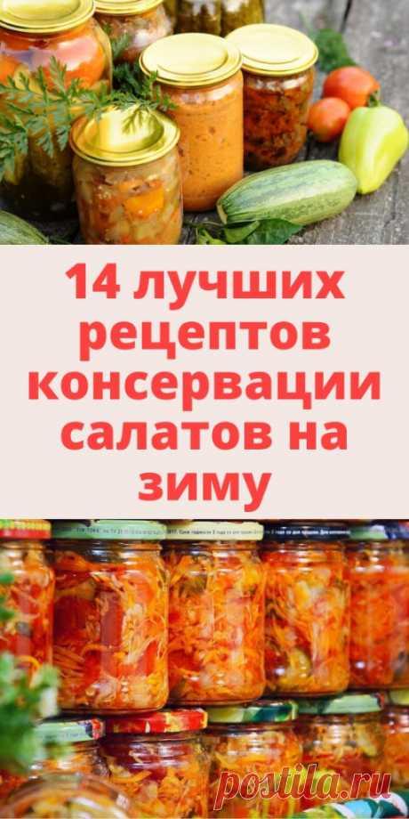 14 лучших рецептов консервации салатов на зиму - My izumrud