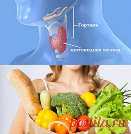 """Витамины  и микроэлементы для щитовидной железы - Женский журнал """"Красота и здоровье""""  Поскольку через недостаток йода, витамина D, B, тирозина, который относится к аминокислотам, а также многих других элементов нарушается синтез гормонов, происходит гормональный дисбаланс в организме. По этой же причине начинается развитие заболеваний щитовидной железы и других органов человека."""