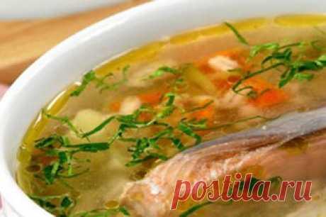 Такая простая «уха» — АРЕНА Рецепт от Кима Маркеса. Suquet De L'Almirall Ингредиенты: Помидоры (мелко нарезанные) 1 шт. Оливковое масло Соус айоли Рыбный бульон 200 мл Обжаренные ломтики картофеля Морепродукты: Рыба Сан-Педро (или Тюрбо) 200 г Мидии 2-3 шт. Морские моллюски 2-3 шт. Королевская креветка Зелень для украшения