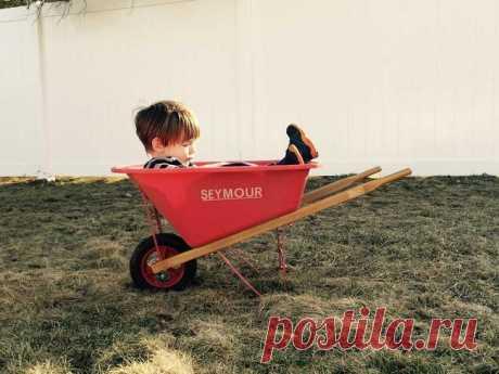 Как сделать тележку своими руками: садовая, строительная