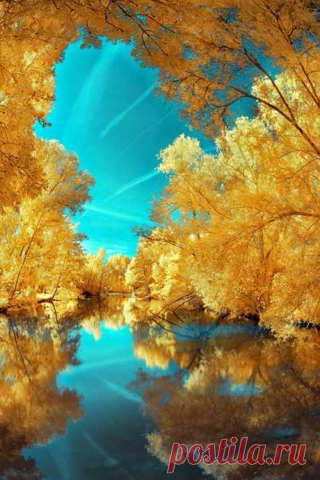 Beautiful | Natuur