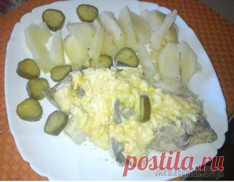 El pez en polaco. Puede por-pomorski.