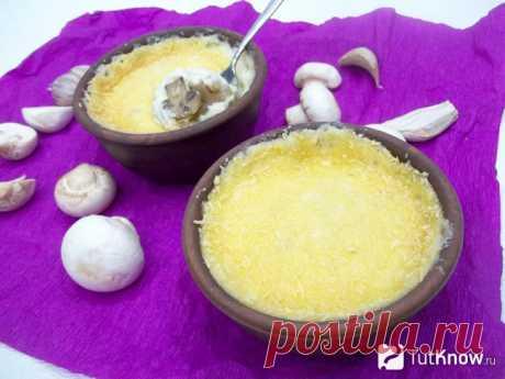 Рецепт приготовления грибов: жульен из шампиньонов