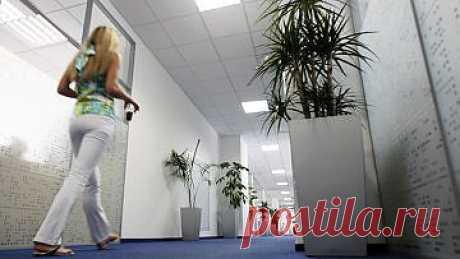 Женщины могут получить два дня оплачиваемого отпуска в «критические дни» — Рамблер-Новости