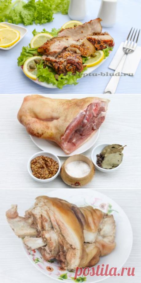 Рецепт свиной рульки – запеченная рулька в духовке