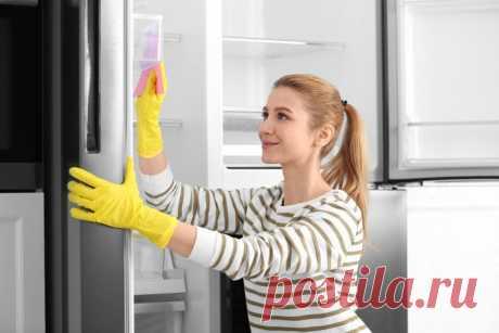 Как избавиться от запаха в холодильнике: чистим самые загрязненные места :: Жилье :: РБК Недвижимость