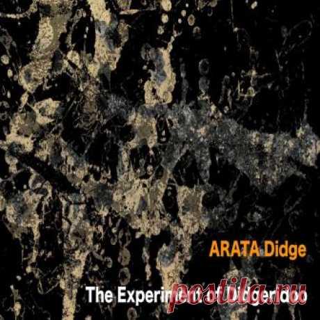 ARATA Didge (Япония) - The Experiment of Didgeridoo - METICULOUS MIDGETS - сетевой арт-лейбл, интернет-радио