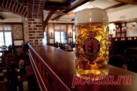 Бизнес-идея: Открытие магазина разливного пива / Сферический бизнес