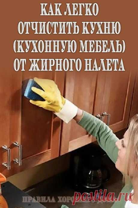 Уборку на кухне приходится проводить достаточно часто, особенно досаждают хозяйкам капельки жира на поверхности. С ними трудно справиться: влажной тряпкой их не стереть, металлическая сетка царапает мебель, от чистящего средства остаются белые пятна.