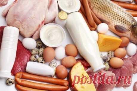 Две схемы похудения по принципу белковой диеты — Диеты со всего света