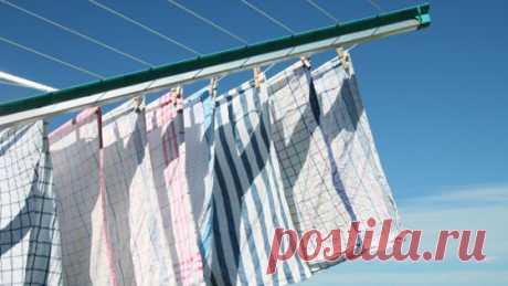 Зачем стирать кухонные полотенца растительным маслом — Рамблер/женский