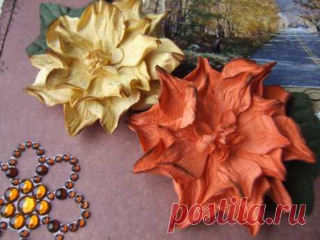 Бумагопластика. Цветы для скрапбукинга