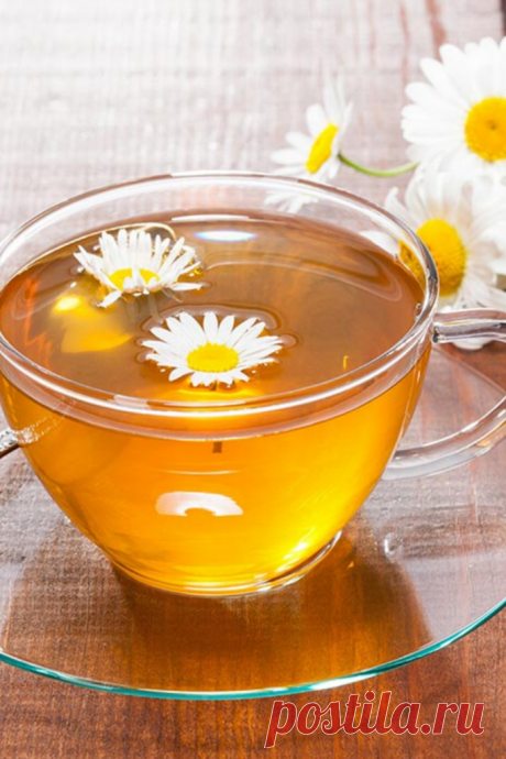 Еще не пьете ромашковый чай? Очень зря! После этой информации вы точно захотите заварить себе кружечку - Образованная Сова