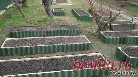 У кого какие грядки?: Группа Практикум садовода и огородника
