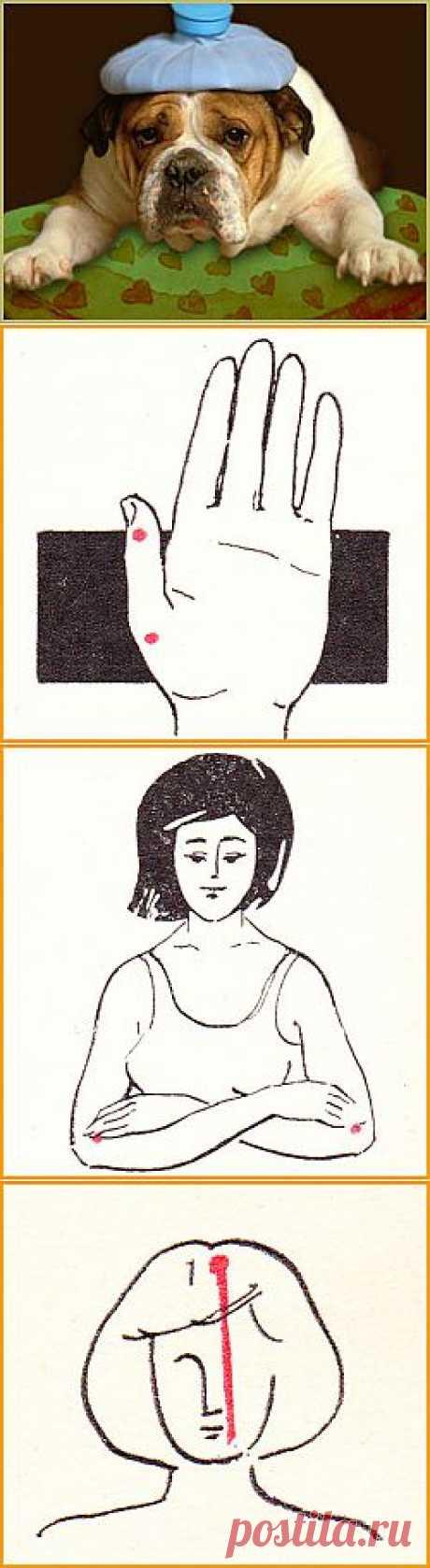 Упражнения для снятия головной боли | Возраст жизни не помеха