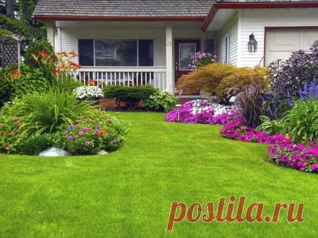 Самые популярные методы озеленения участка