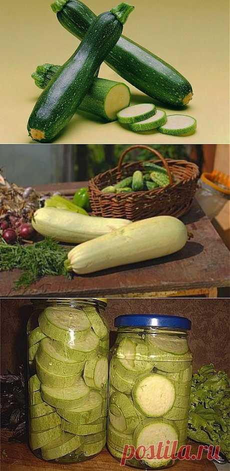 Рецепты маринования и засолки кабачков на зиму / Простые рецепты