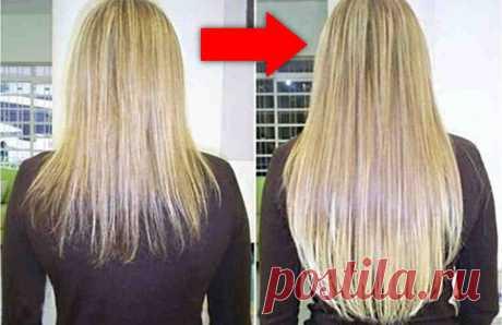 Домашний шампунь, от которого волосы растут, как сумасшедшие! Ни для кого не секрет, что на полках магазинов практически невозможно найти шампунь, который был