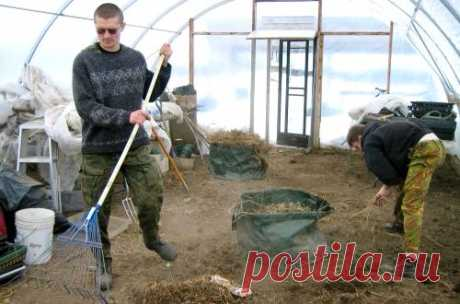 Sanitary processing of the greenhouse from polycarbonate in the fall and in the spring: working procedures