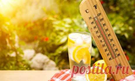 Как нужно питаться в жару | Делимся советами