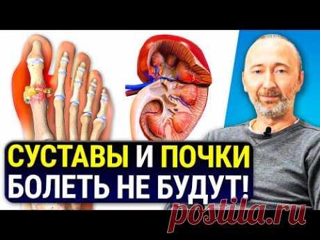 Как вывести МОЧЕВУЮ КИСЛОТУ из организма? Лечение Подагры и Почек без лекарств натуральными мерами!