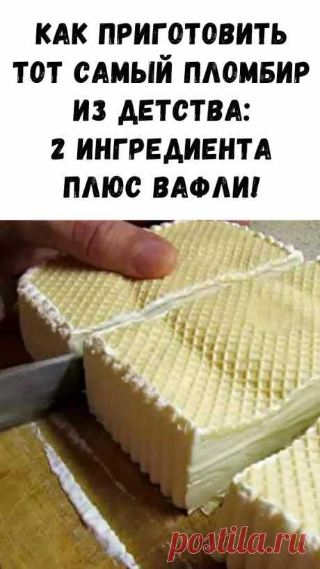 Как приготовить тот самый пломбир из детства: 2 ингредиента плюс вафли! - Интересный блог
