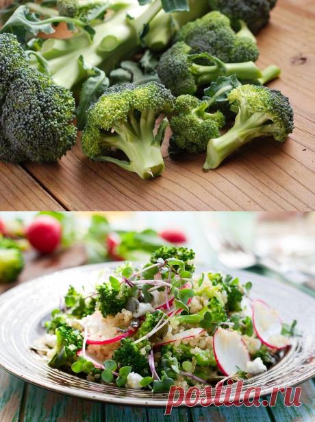Как приготовить вкусный салат из брокколи — Фактор Вкуса