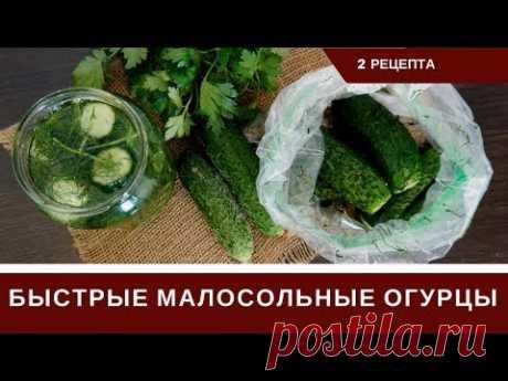 Los Pepinos poco salados rápidos En el Paquete Y En el Agua mineral