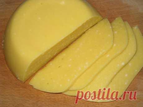 Делаем твердый сыр в домашних условиях  Твердый сыр в домашних условиях приготовить несложно. А будет он определенно полезнее купленного в магазине. Продуктом собственного производства можно смело кормить ребенка, поскольку такой сыр не со…