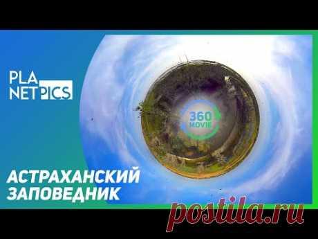 VR 360   Астраханский биосферный заповедник