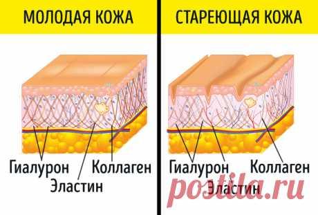 9 добавок, которые работают лучше и стоят дешевле любого крема от морщин