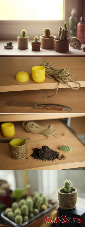 Домик для маленького кактуса (Diy) / Цветы, вазы и цветочные горшки / ВТОРАЯ УЛИЦА