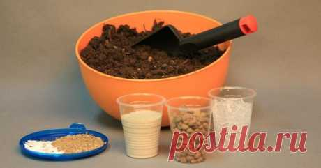 Подготавливаем почву с использованием опилок для рассады томатов Какой должна быть почва для рассады томатовГрунт должен содержать необходимое количество питательных веществ, тогда земля будет плодородной.Баланс обязательно должен присутствовать в соотношении пропо...