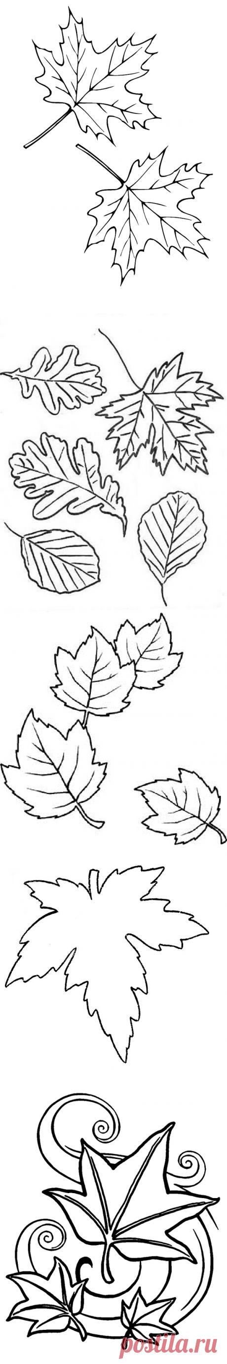 Трафарет Осенние листья   Мастер классы   рукоделие, декор, полимерная глина, плетение, вышивание