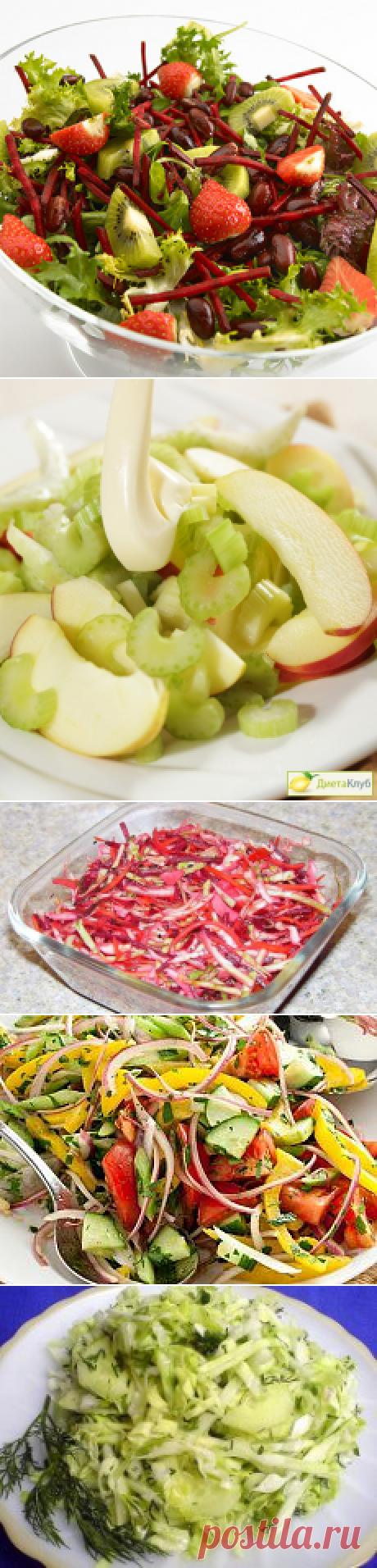 La búsqueda sobre el Postlimo: las ensaladas para el adelgazamiento