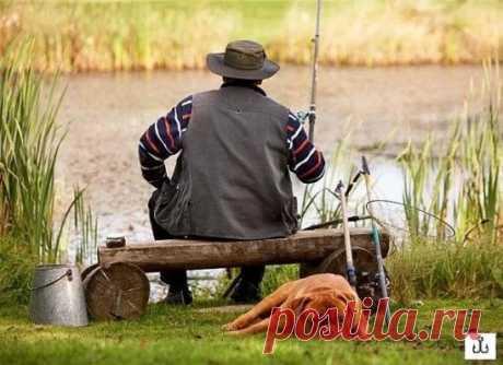 Чем рыбалка полезна для здоровья?