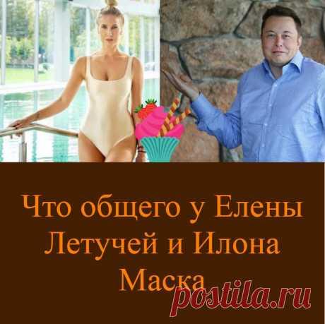 Что общего у Елены Летучей и Илона Маска