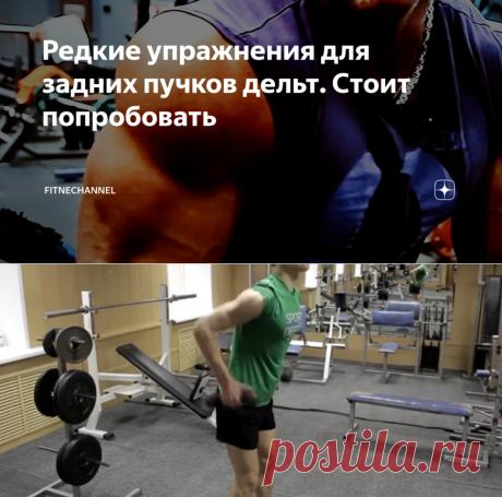 Редкие упражнения для задних пучков дельт. Стоит попробовать | fitnechannel | Яндекс Дзен