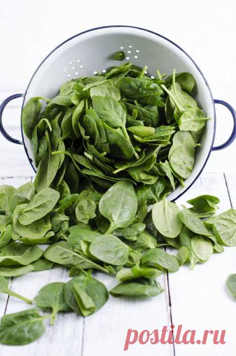 Какие салатные листья самые полезные