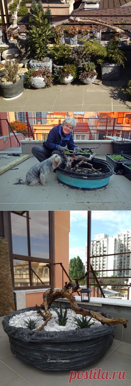 Кашпо для сада и дачи - мастерим своими руками...   Ольга Нощенко   Яндекс Дзен