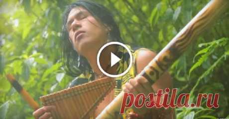 15 000 000 presentaciones: «El Condor Pasa» de Leo Rojas. ¡Apetece escuchar esta música eternamente! La canción «el Vuelo del cóndor», era reconocida los bienes nacionales y la herencia cultural del Perú.