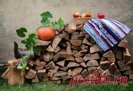 Народные приметы о дровах и поленьях: К чему полено выпадает из камина, дрова в печи не разгораются, трещат. Что сулит, если уронить полено при укладке дров, к чему снятся, видеть во сне, и другие 25 примет и поверий: