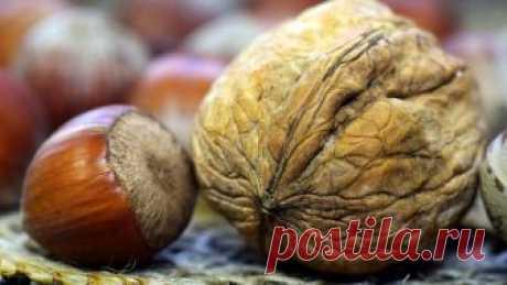 Орехи защищают отмерцательной аритмии - новости на Здоровье Mail.Ru