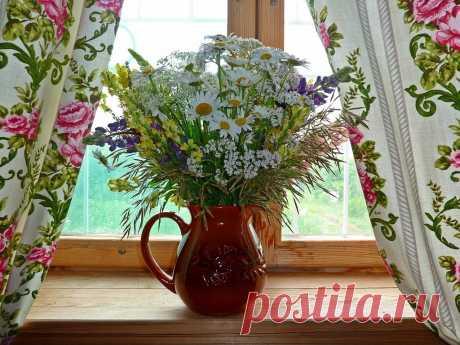 Фото 3194, альбом Мир цветов. - 157 фото   Фотографии ЛЮДМИЛы Александрийской.