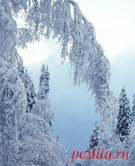 Жизнь сама по себе является самой прекрасной сказкой. Люблю тишину. Тишина — это особое состояние мира и души Как это важно уметь вовремя отдыхать от всего, в том числе окунуться в свою тишину и поставить время на паузу... Зимой хорошо наслаждаться тишиной и уютом. И, конечно, набираться сил рядом с теми, кто рядом с тобой всегда вне зависимости от времени года...