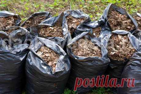 Как сделать компост в мешках Компост - доступное и дешевое удобрение, которое используется для восстановления грунта. В нем содержатся полезные микроэлементы, необходимые для нормального развития растительных культур.