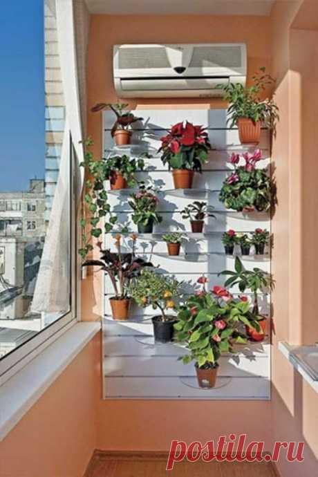 Как превратить балкон в цветущий сад — Делаем руками
